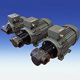 pompa silnik BFP ATEX-3GD
